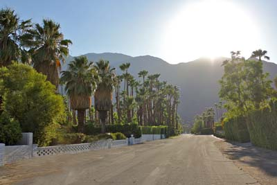 Three Things to Know before Visiting Palm Springs
