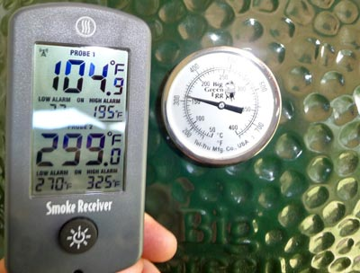 Thermometer for Big Green Egg Buying Guide